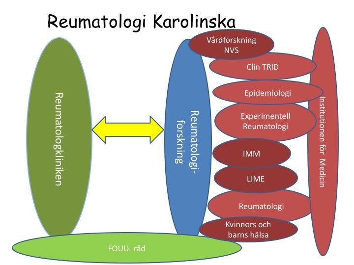 karolinskadiagram